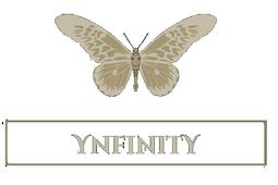 Ynfinity-1.png